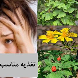 تغذیه (رژیم غذایی ارگانیک) در اسکیزوفرنی برای بهبود مشکلات عصبی و روانی